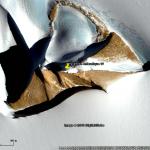 pyramide antarctique fake